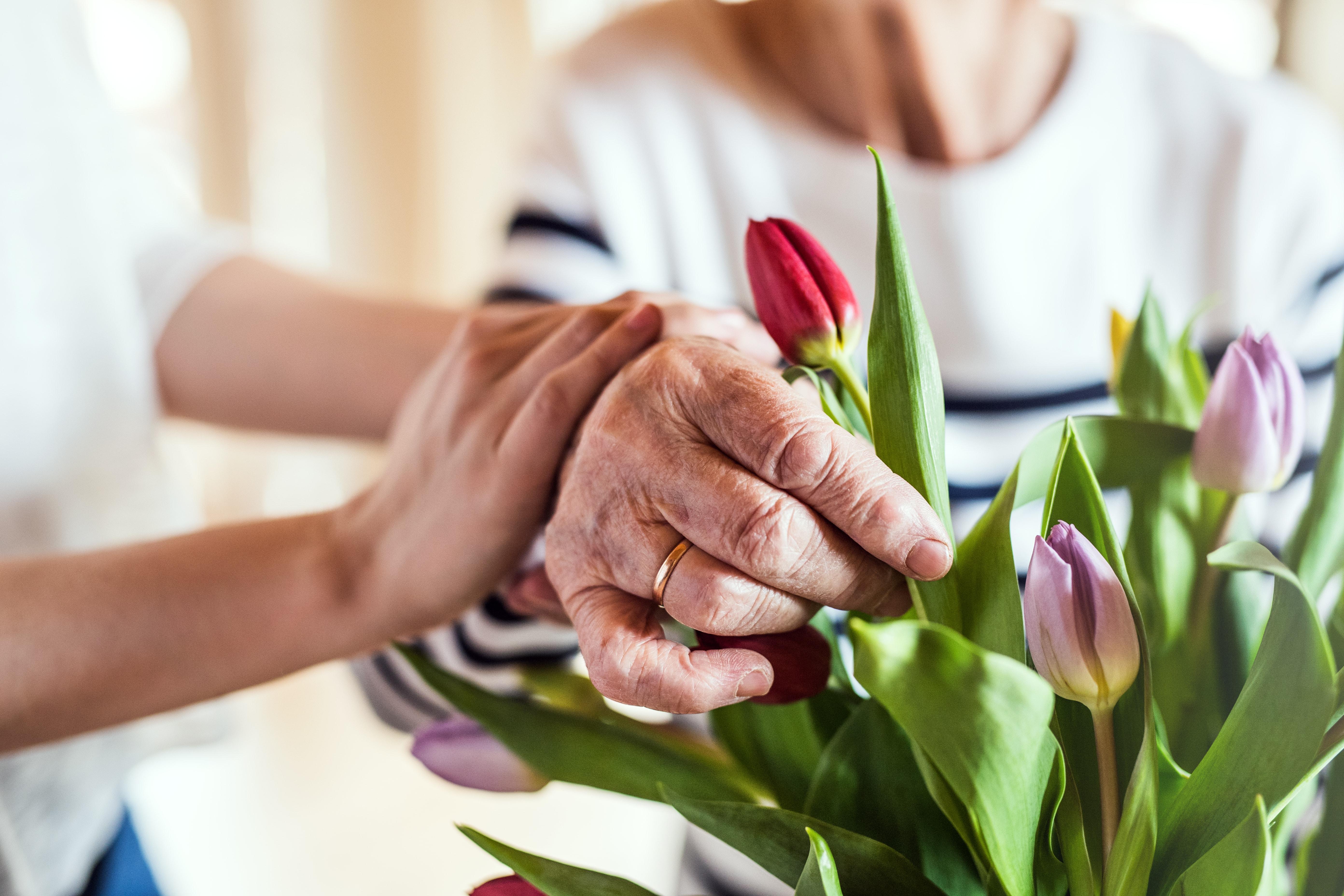 Alzheimers Fact Sheet