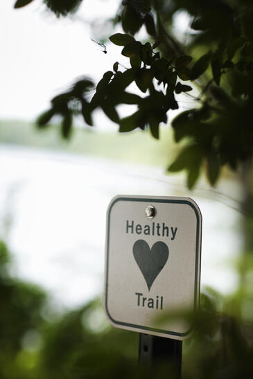 A healthy heart trail sign