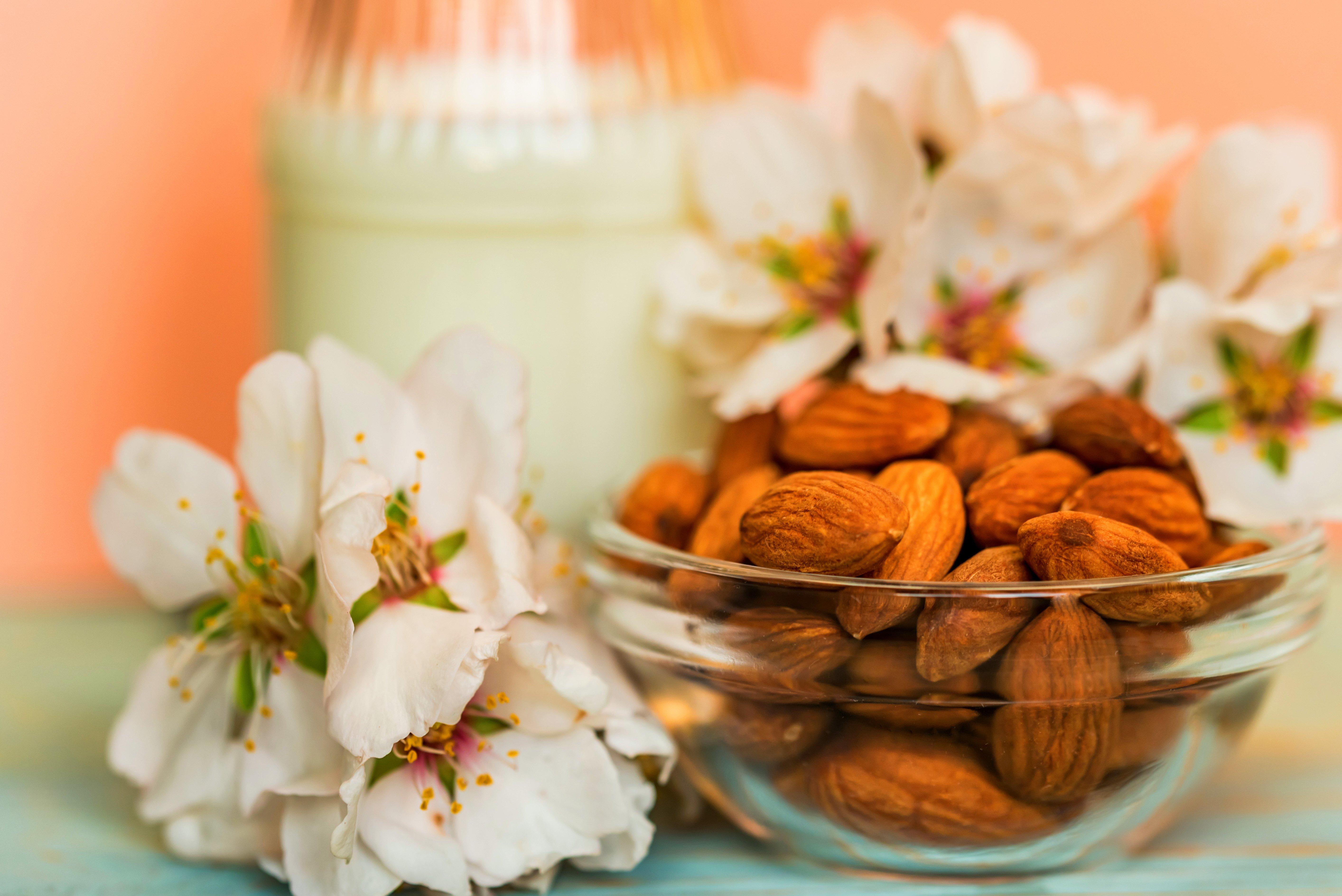 almond-with-jar-of-almond-milk-and-white-flowers-U3ELYWF